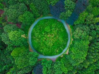 Economía circular: producir respetando el entorno
