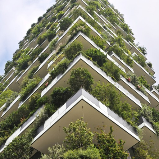 Incorporating nature into our cities